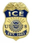 ICE арестовала организатора пиратского онлайн телевидения